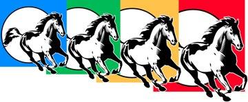 Amplia gamma de piensos para tu caballo